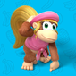 Profile of Dixie Kong from Play Nintendo.