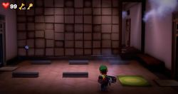 The Yoga Room in the Fitness Center in Luigi's Mansion 3