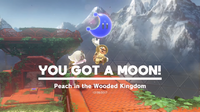 SMO Wooded Moon 54.png