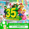 NL SMB 35th Anniversary Direct Promotional Artwork.png