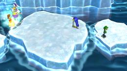 Polar Extreme