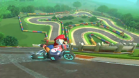 <small>GBA</small> Mario Circuit, anti-gravity section.