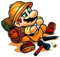 Mario P2.png