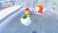 SMO Snow Moon 17.png