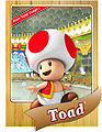 Level1 Toad Front.jpg