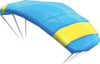 Paraglider, also known as Parafoil.