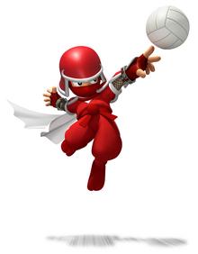 Ninjasportsmix.png