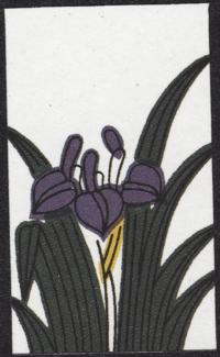 Fourth card of May in the Club Nintendo Hanafuda deck.
