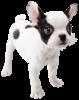 French Bulldog's Spirit sprite from Super Smash Bros. Ultimate