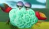 A Clawdaddy in Yoshi's Crafted World.