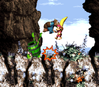 List of Donkey Kong Country 3: Dixie Kong's Double Trouble! glitches