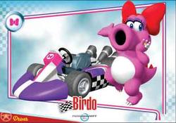 The Mario Kart Wii Birdo trading card