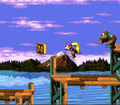 COLOR cheat - Donkey Kong Country 3.png