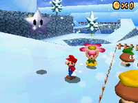 SM64DS SSS SL.png