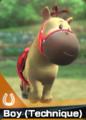 Card Horse Boy (Technique)2.png