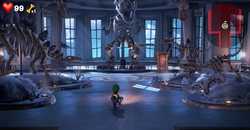 Luigi in the Unnatural History Museum