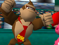 Donkeymt641.png
