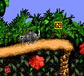 JungleHijinxsColor-N.png
