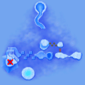 SM64DS Chief Chilly Challenge Map 1.png