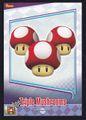 MKW Triple Mushrooms Trading Card.jpg
