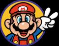 SMBTLL Mario Icon.png
