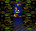 CoralCapers-SNES-N.png