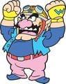 Wario WWMPG artwork.jpg