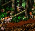 AnimalAntics-RambiDKC2.png