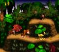Animal Token DKC screenshot.png