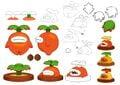 CTTT Piranha Sprout Concept art.jpg