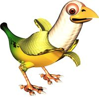 A Banana Bird