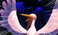 Stork shocked.png