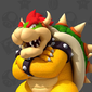 Profile of Bowser from Play Nintendo.