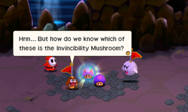 The Captains find the mushrooms