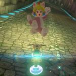 Cat Peach performs a trick.