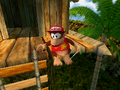 DK's Tree House DKRDS intro.png