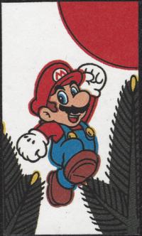 First card of January in the Club Nintendo Hanafuda deck.