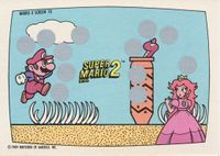 A Nintendo Game Pack scratch-off game card of Super Mario Bros. 2 (Screen 10 of 10)
