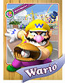 Level1 Wario Front.jpg