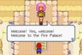 Fire Palace M&LSS screenshot.png