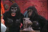 GorillaMyDreams.jpg