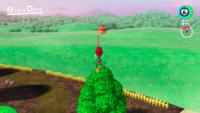 SMO Mushroom Moon 15.png