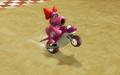Birdo Wheelie.png