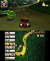 DK Jungle Frog.jpg
