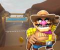 MKT Icon ChocoMountainN64 WarioCowboy.png