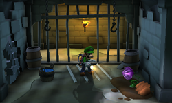 The Dungeon Cells in Treacherous Mansion