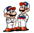 Mario and Luigi 3DHR.png
